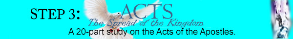 Acts Bible Study Program