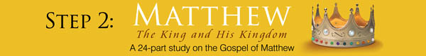 Matthew Bible Study Program