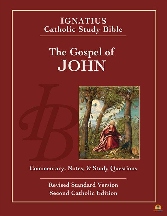gospel of john essay